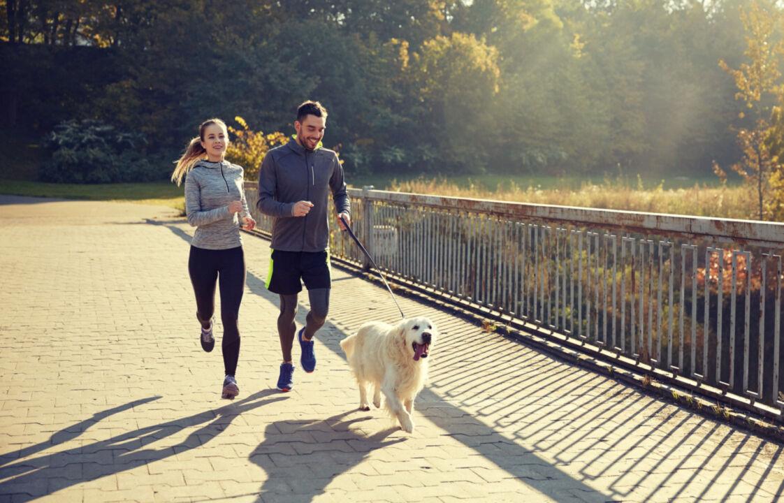 Vertikal-Helse-jogge-forebygging