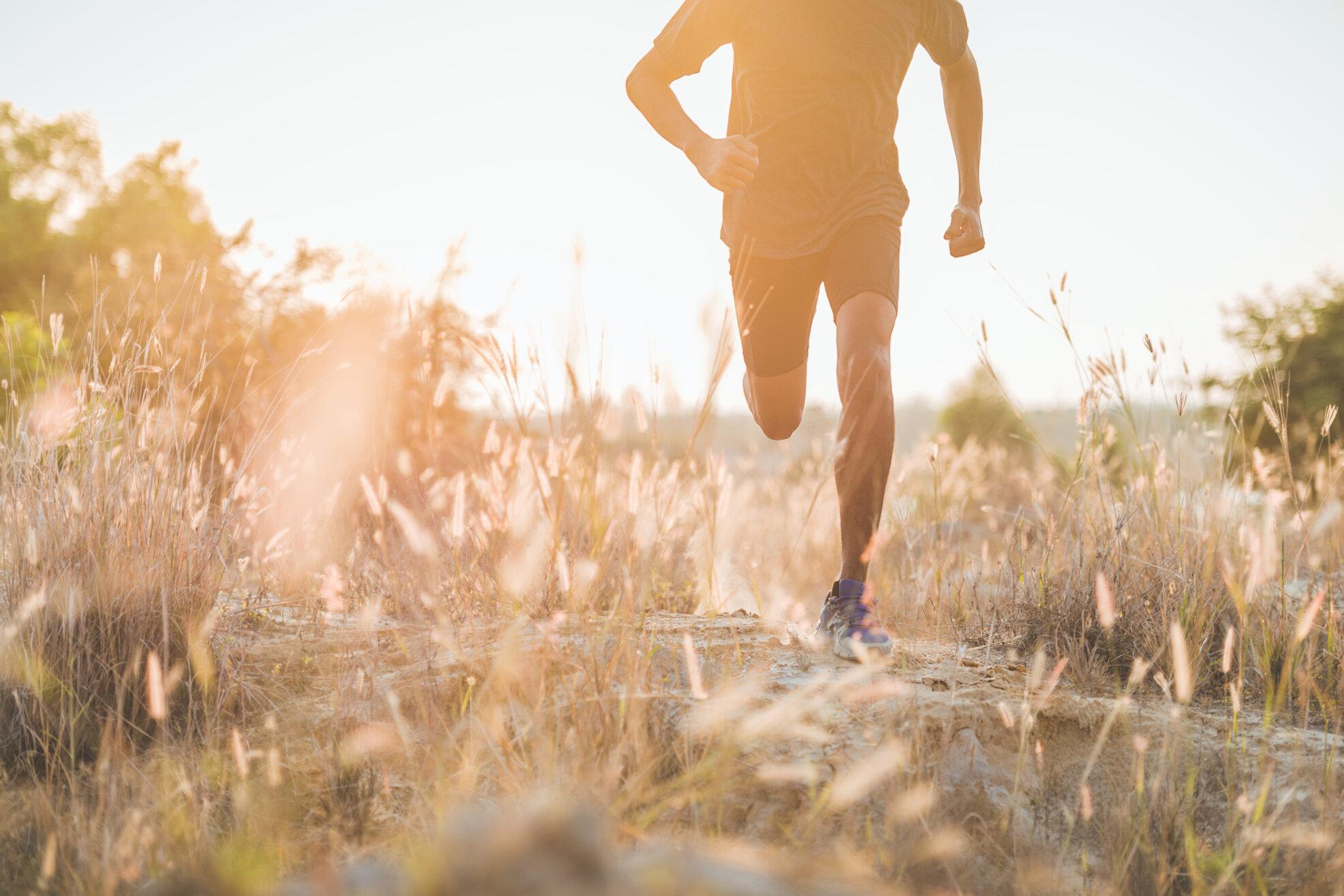 Vertikal Helse 1286062138 jogge eng