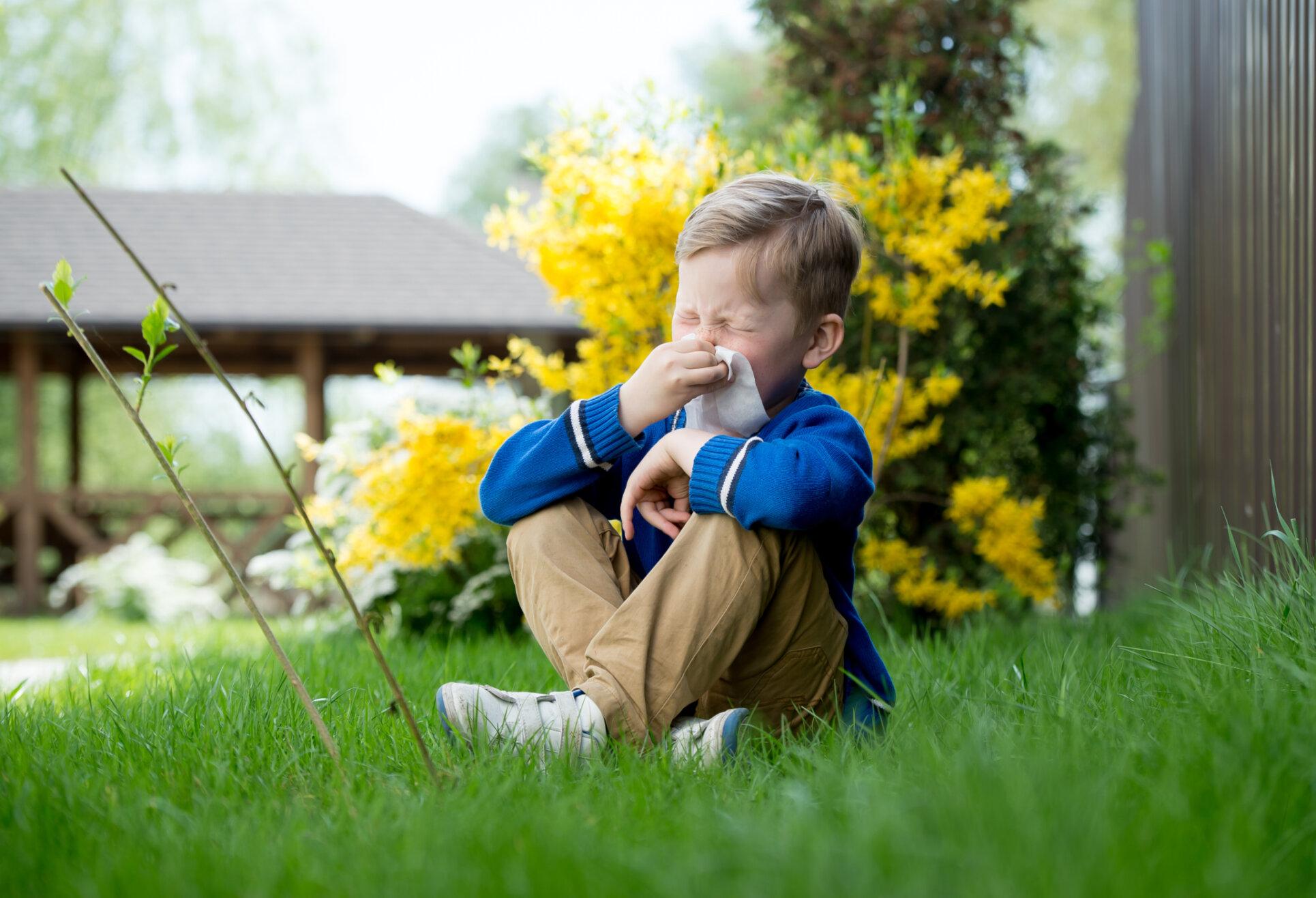 Vertikal-Helse-barn-pollenallergi